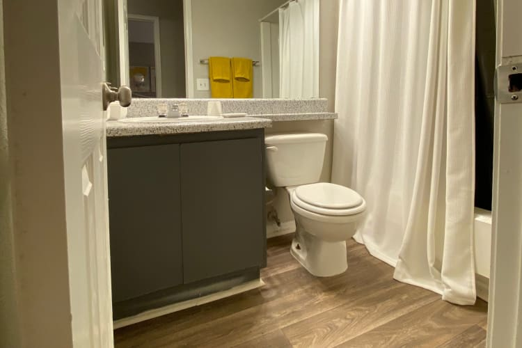 Bathroom at 300 Riverside