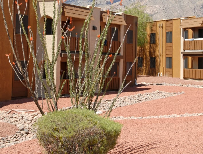Beautiful exterior of our apartments at Elevation Apartments in Tucson, Arizona