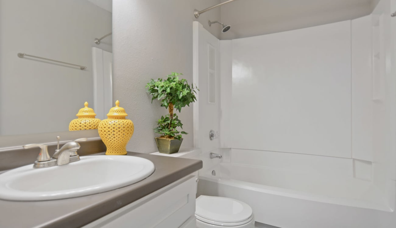 Clean bathroom at Forest Cove in Doraville, Georgia
