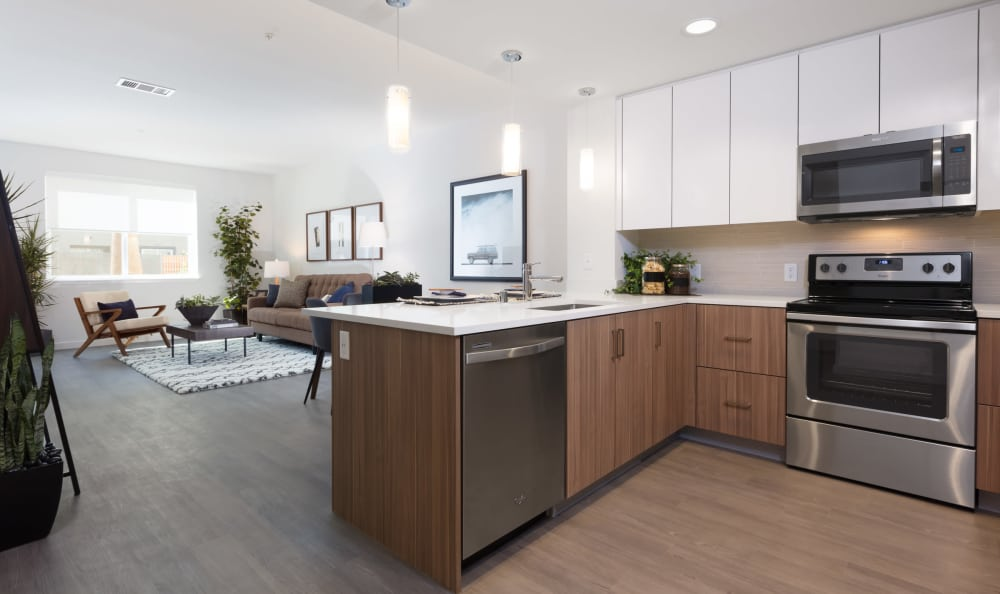 Aster apartments offer open concept floor plans