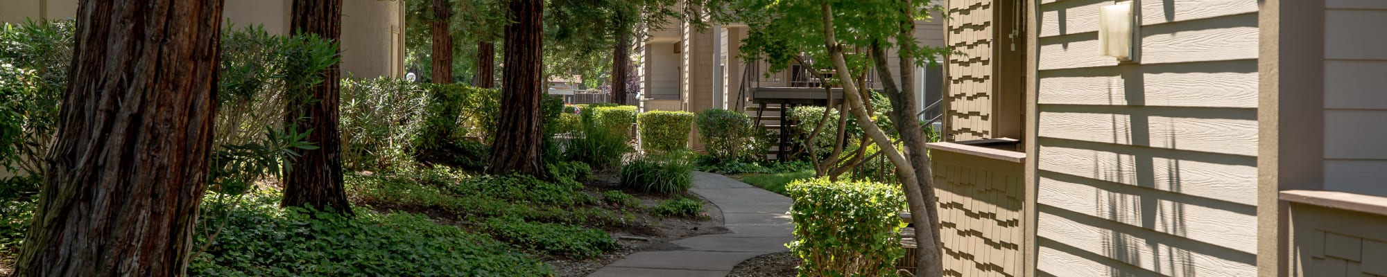 Resident perks at Shaliko in Rocklin, California