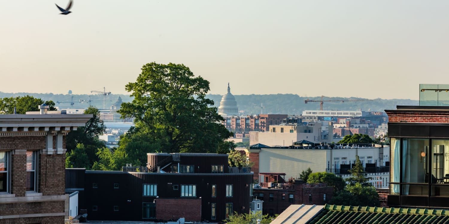 Rooftop view of the Capitol building from AdMo Heights in Washington, DC
