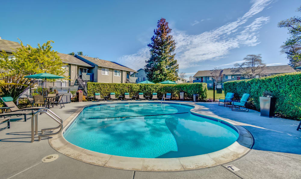 Beautiful swimming pool at Vue Fremont in Fremont, California