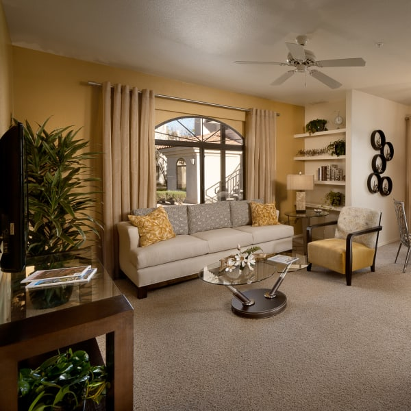 Bright living room with modern decor in model home at San Palmilla in Tempe, Arizona