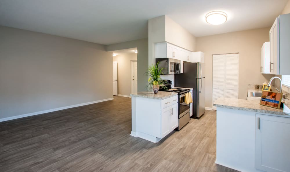 Spacious living room and kitchen at IMT Pinebrook Pointe