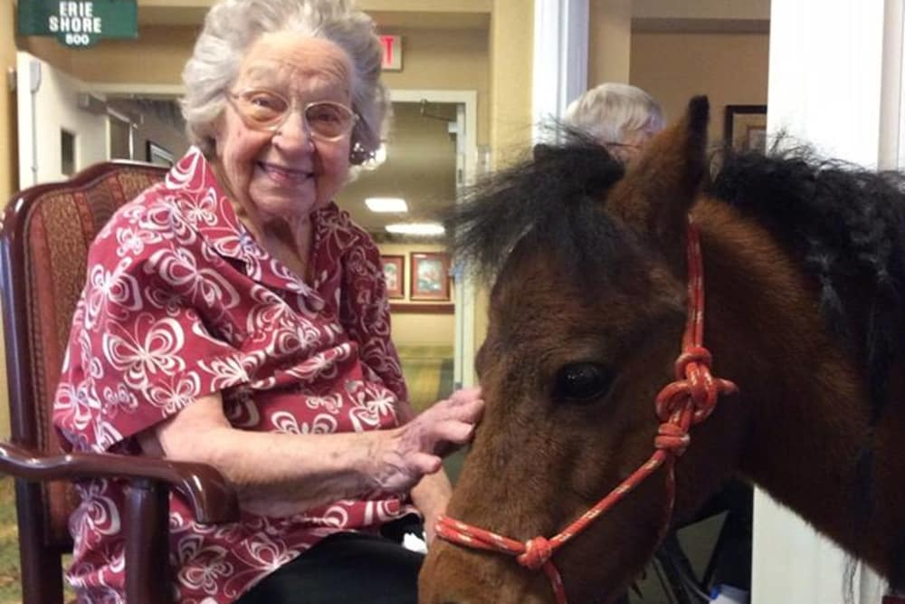 A happy resident petting a small horse at The Willows at Bellevue in Bellevue, Ohio
