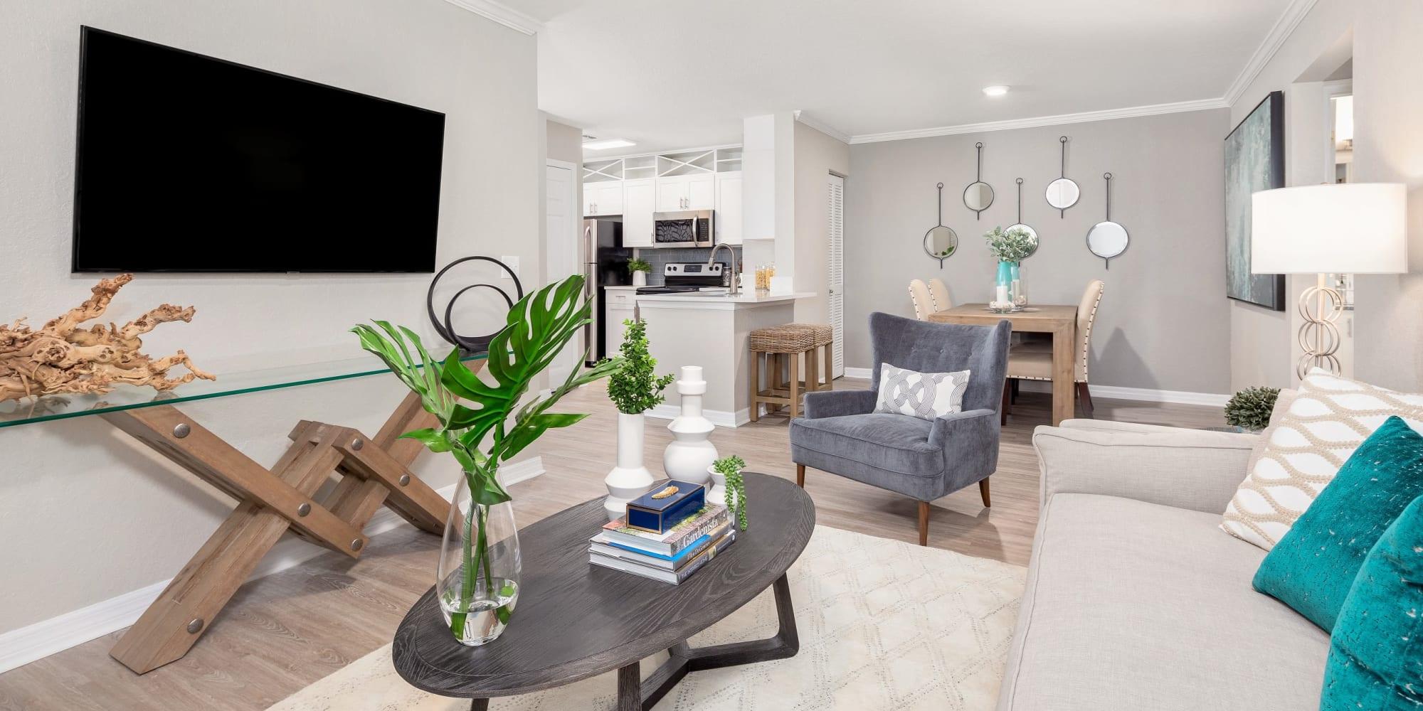 Apartments at Amira at Westly in Tampa, Florida