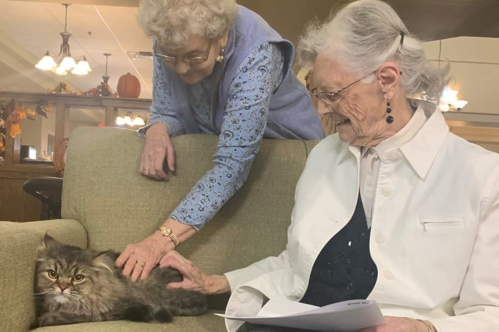 Residents petting a cat at The Wellington in Minot, North Dakota
