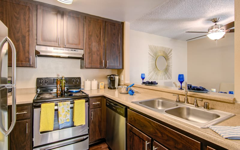Renovated kitchen with stainless steel appliances and espresso cabinets at Lakeview Village Apartments in Spring Valley, California