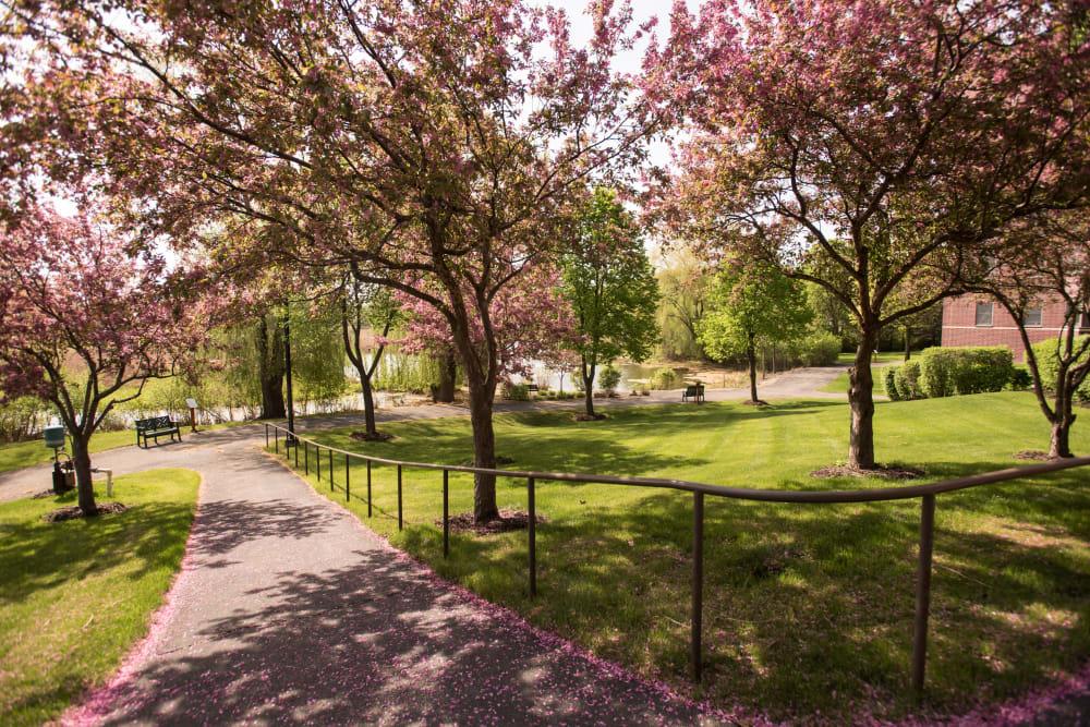 Backyard path at The Glenn Hopkins