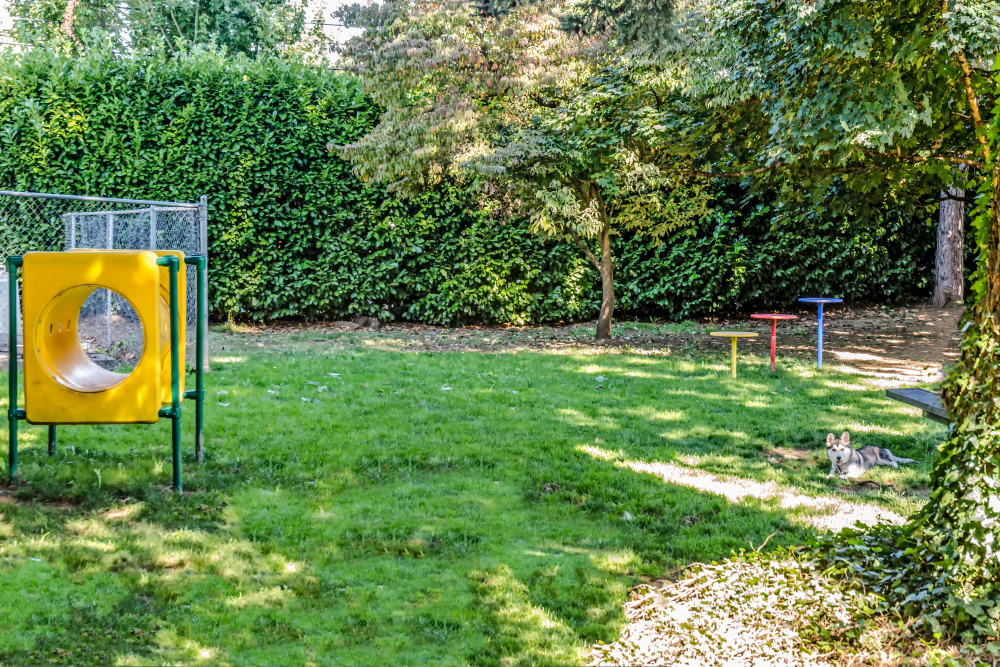 Dog park at Madison Park Apartments in Vancouver, Washington