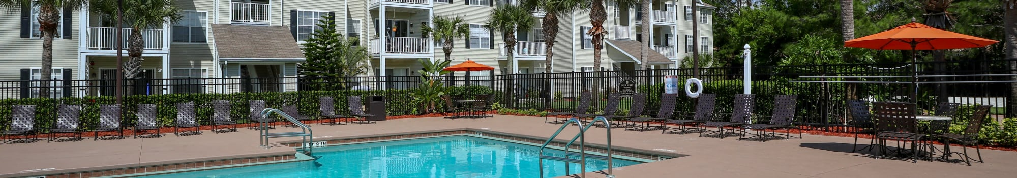 Pet friendly apartments in New Port Richey