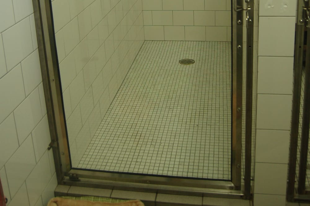 Shower room at Kenmore Animal Hospital in Kenmore, New York
