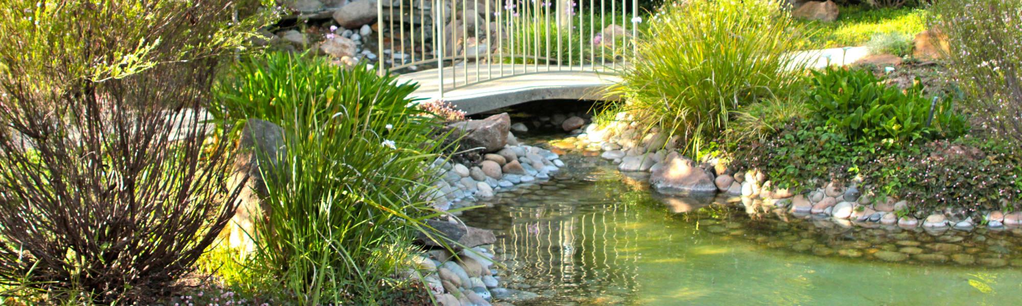 Amenities at Spring Creek Apartments in Santa Clara, California