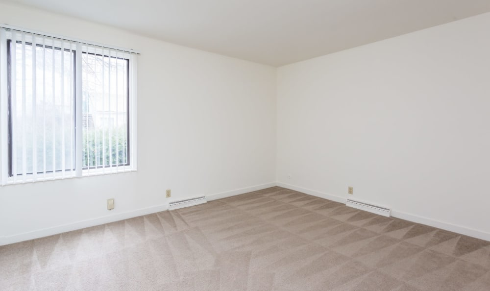 Open floor plan space at Emerald Springs Apartments in Painted Post