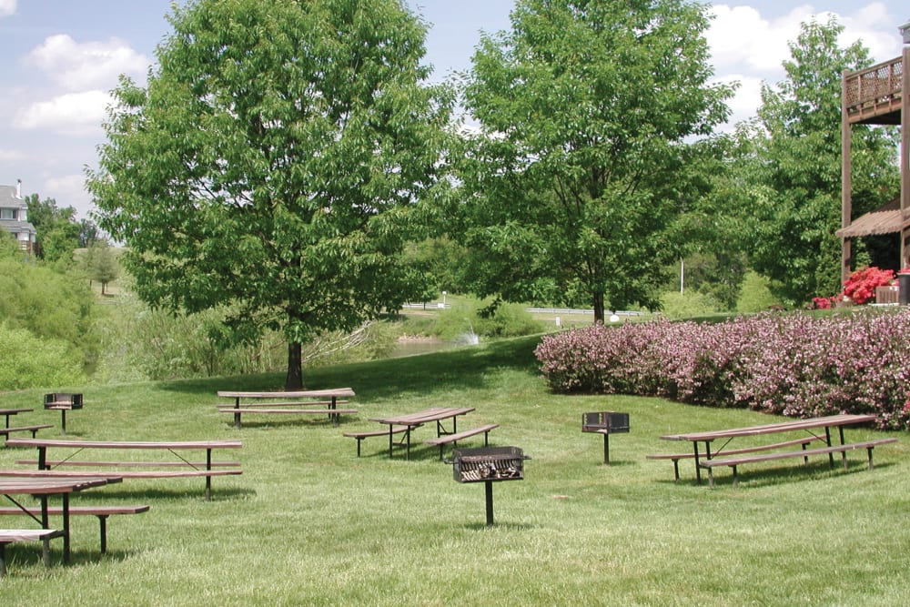 Picnic tables and bbq area at Tamarron Apartment Homes in Olney, Maryland