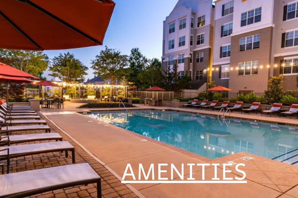 View the amenities at Emblem Alpharetta in Alpharetta, GA