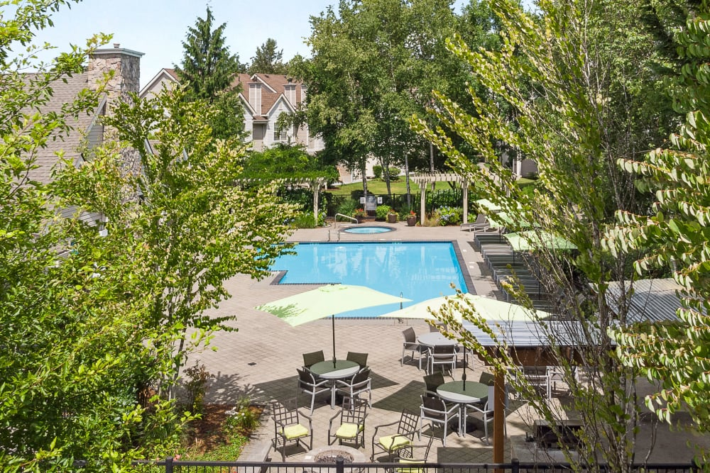Beautiful resort-style swimming pool with lounge chairs and umbrellas at HighGrove Apartments in Everett, Washington