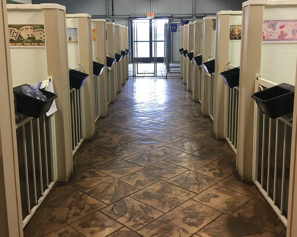Rows of resort rooms at University Pet Resort in Merced, California
