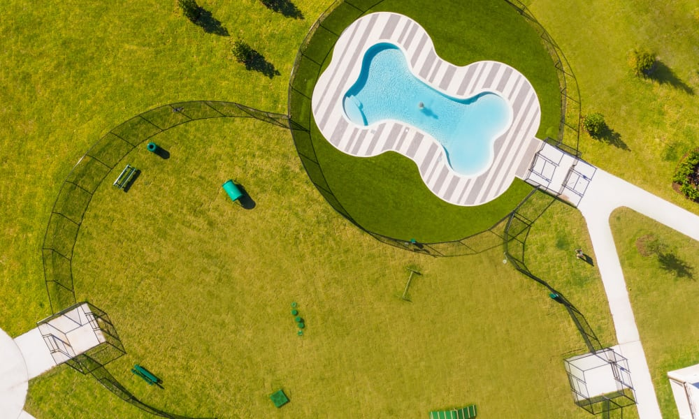 Aerial photo of the dog park with pool at Luxor Club in Jacksonville, Florida