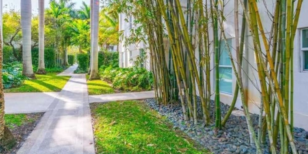 Walking paths at The Cloisters in Miami, Florida