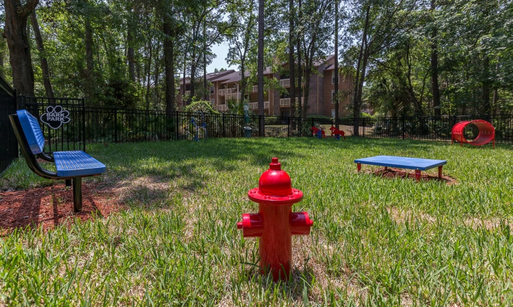Awesome bark park onsite for residents to bring their dogs at Belle Vista Apartment Homes in Lithonia, Georgia