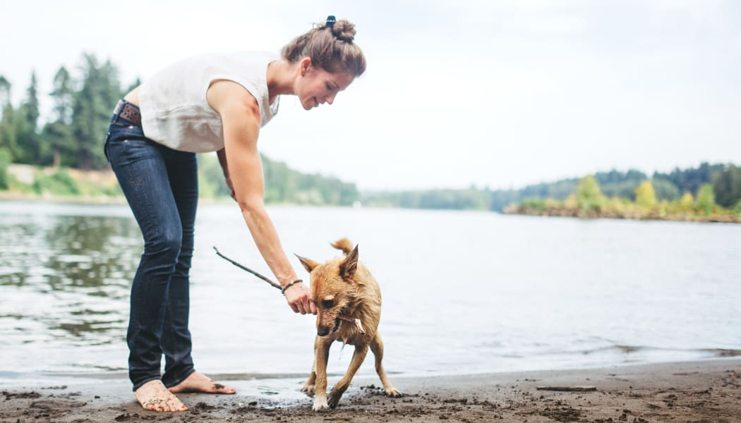 Resident and her dog playing at a lake near Eaglewood Apartments in Woodland, California