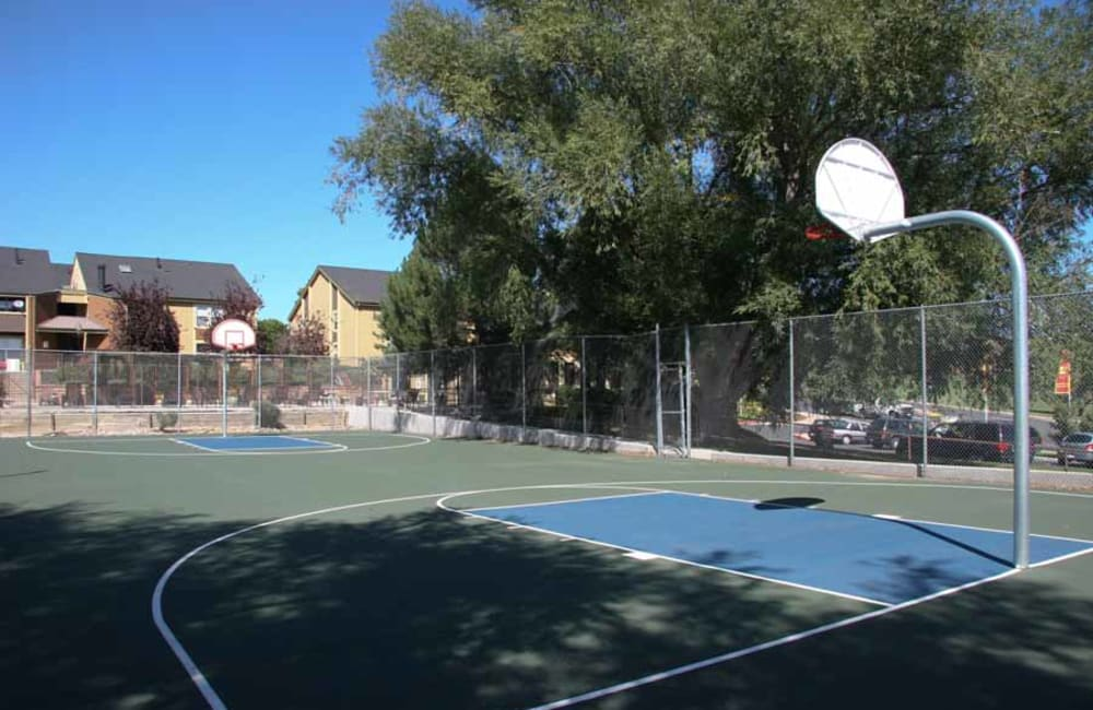 Play some hoops on the outdoor court at Montair Apartment Homes in Thornton, CO