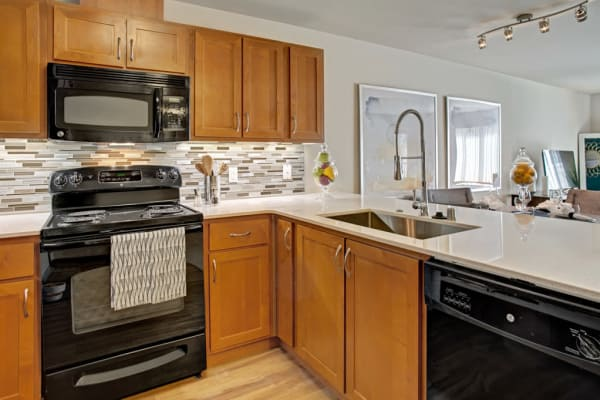 Enjoy impressive amenities at apartments in Shoreline