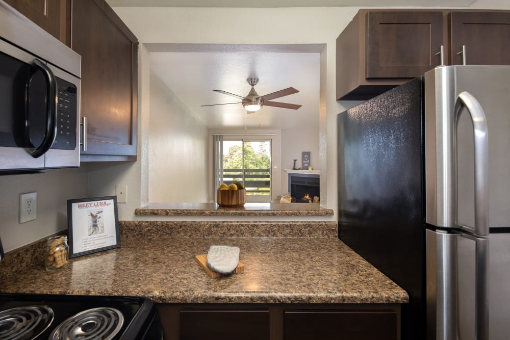Granite-style counter tops in kitchens at Latitude Apartments in Everett, Washington