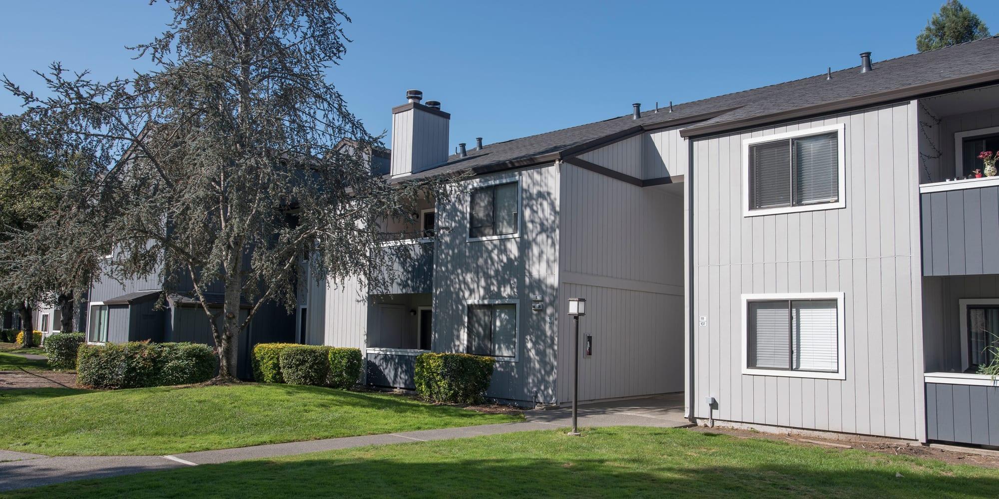 Apartments at Park Ridge Apartment Homes in Rohnert Park, California
