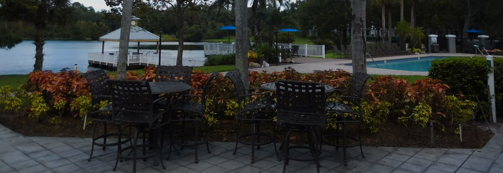 Tampa FL Apartments