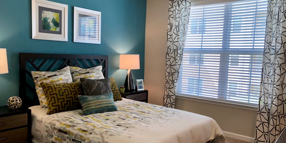 Beautiful decorated room with large window for tons of light at Level at 401 in Raleigh, North Carolina