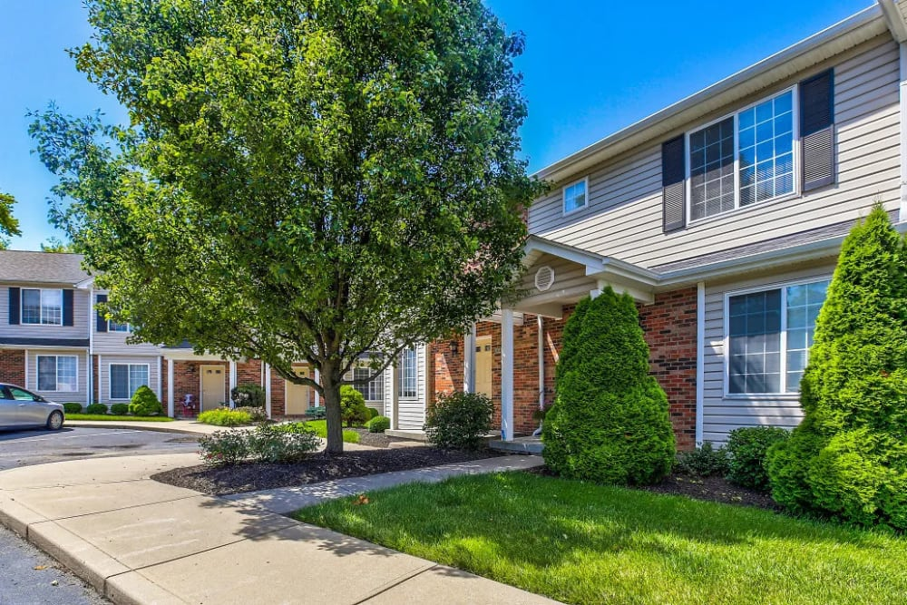 Mature oak tree and trimmed hedges at Reserve at Ft. Mitchell Apartments in Ft. Mitchell, Kentucky