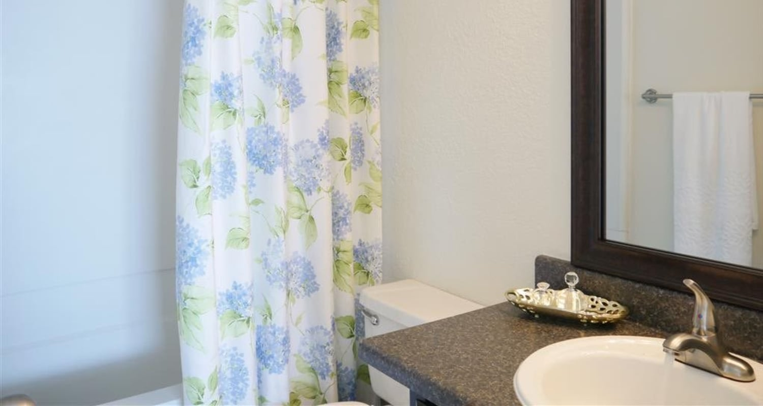 The Park at Ashford offers a beautiful bathroom in Arlington, Texas