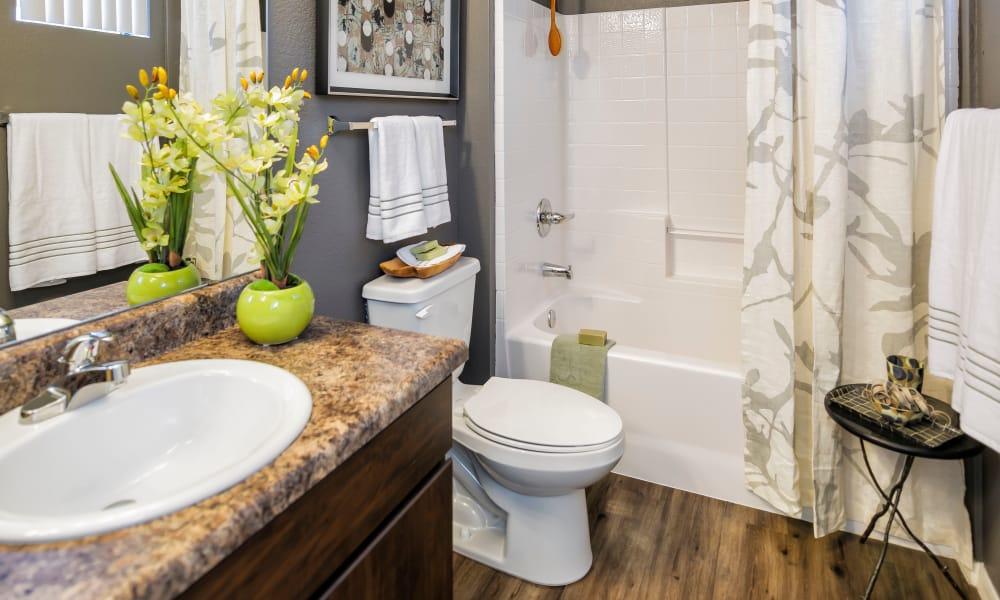 Bathroom at Elevation Apartments