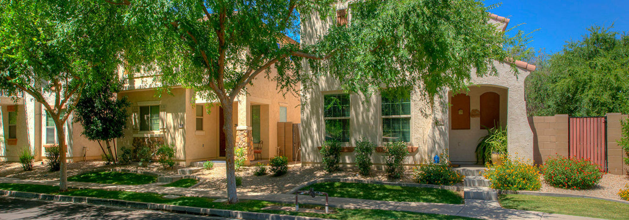 Landscaped grounds around BB Living at Higley Park in Gilbert, Arizona