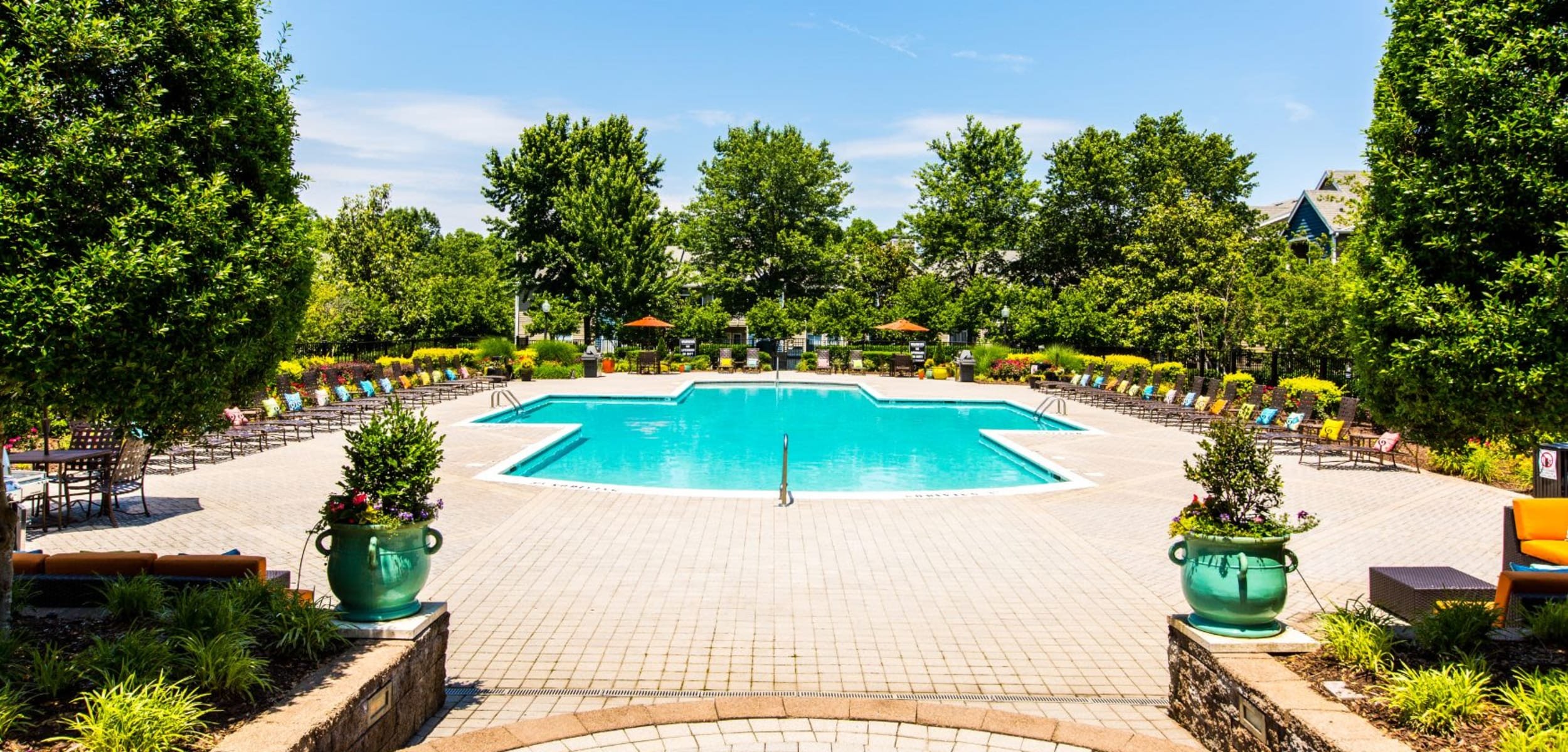 Swimming pool surrounded by trees at Marquis at Silverton in Cary North Carolina,