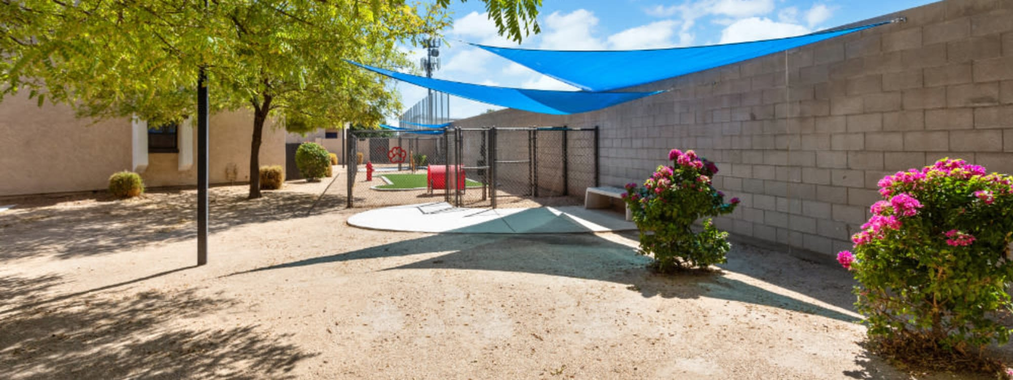1408 Casitas at Palm Valley's pet policy in Avondale, Arizona