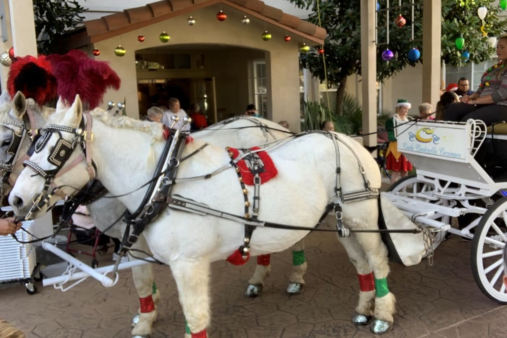 A horse drawn carriage at Merrill Gardens at Oceanside in Oceanside, California.