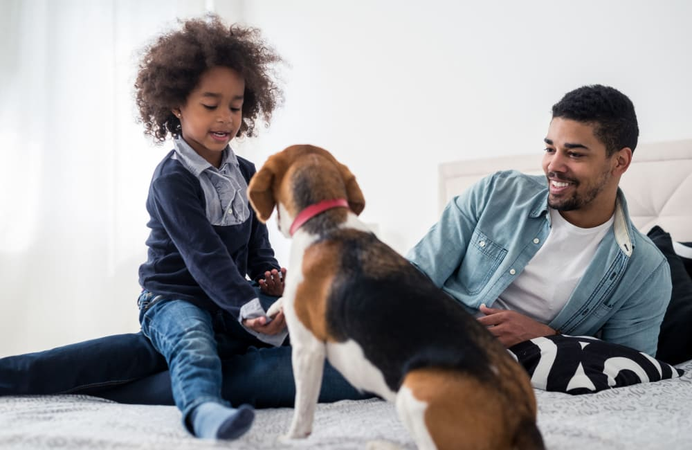 Family and their dog enjoying their new home at 1022 West Apartment Homes in Gaffney, South Carolina