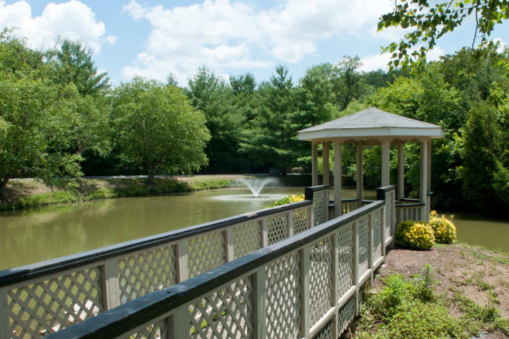 Pond and gazebo at Spring Meadow in Knoxville, Tennessee
