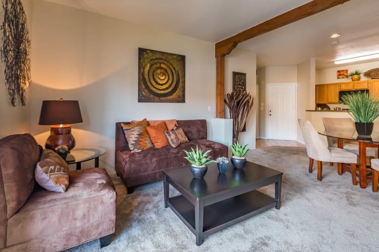 Modern living room at San Miguel del Bosque in Albuquerque, New Mexico
