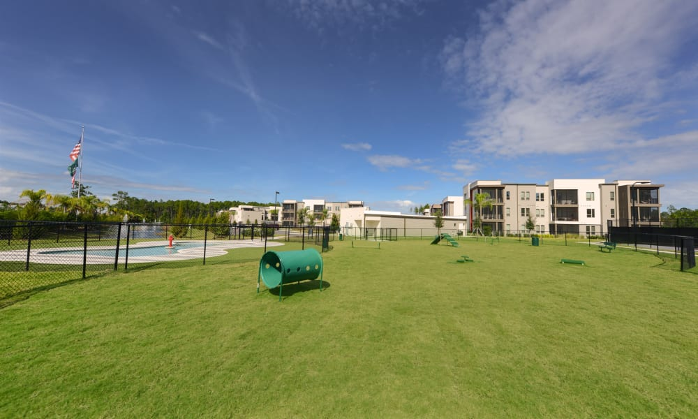 Expansive agility course at the onsite dog park at Luxor Club in Jacksonville, Florida