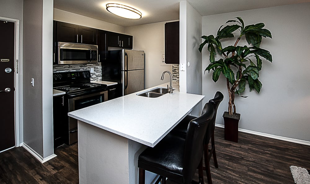 Kitchen with a breakfast bar at Spice Tree Apartments in Ann Arbor, MI