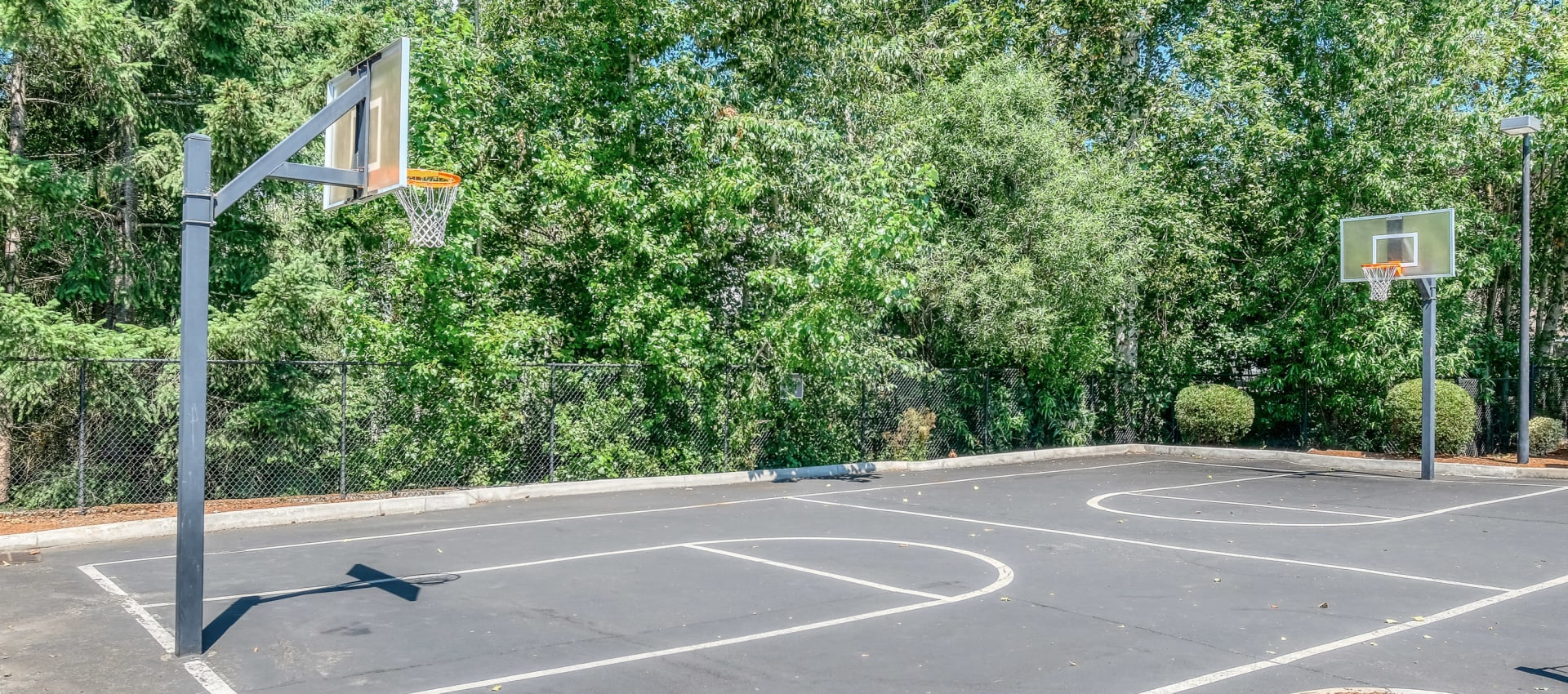 Basketball Court at Centro Apartment Homes