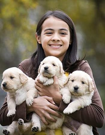 Child holding puppies at St. Francis 24hr Animal Hospital
