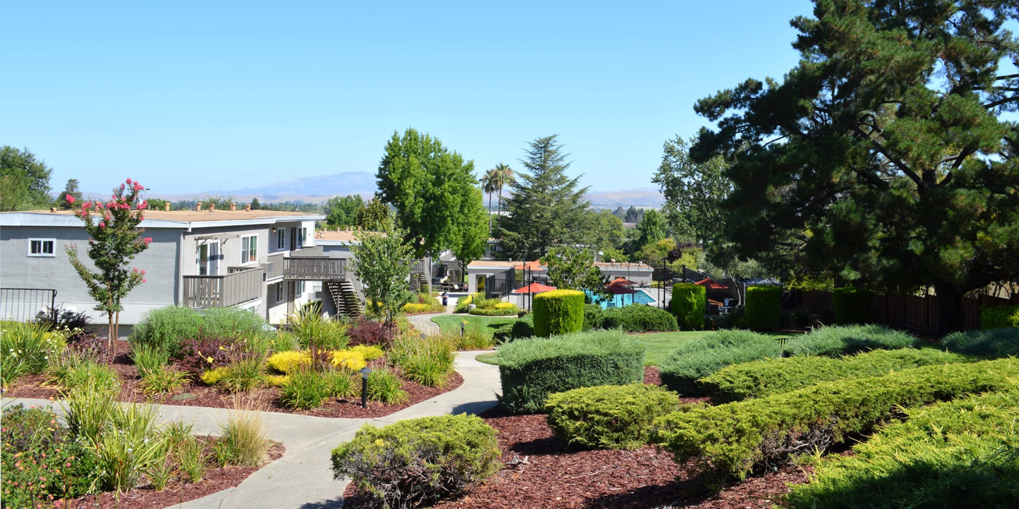 Mature trees and beautifully manicured landscaping at Pleasanton Heights in Pleasanton, California