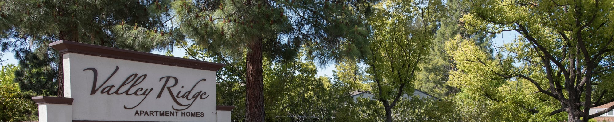 Resident perks at Valley Ridge Apartment Homes in Martinez, California