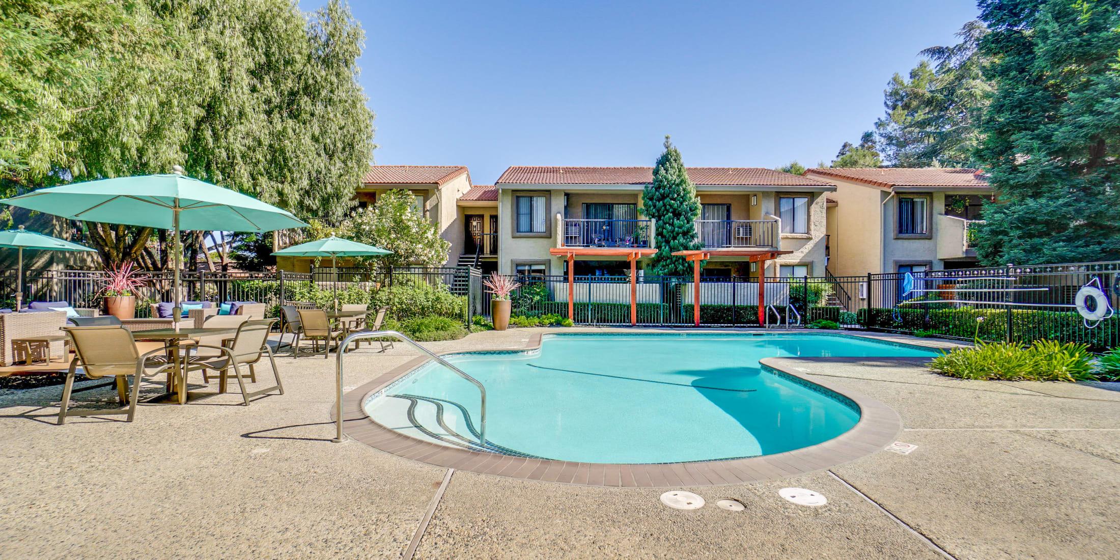 Photos of apartments in San Jose, CA